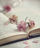 Dry roses and old book. Royalty Free Stock Photography