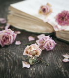 Dry roses and old book. Stock Photos