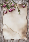 Dry roses on the old paper and wooden background Stock Image