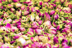 Dry roses petal Royalty Free Stock Photo