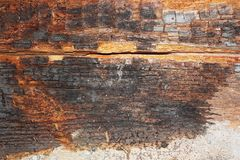 Free Dry Rot On Old Wood Beam Stock Photos - 100663463