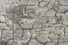 Dry rusty earth bottom at waterless summer Royalty Free Stock Image