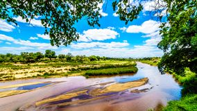 The almost dry Sabie River at the end of the dry season at Skukuza Rest Camp in Kruger National Park. In South Africa Stock Image
