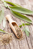 Dry sage Stock Images
