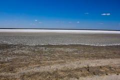 Dry saline land Stock Image