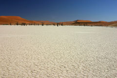 Dry salt lake Royalty Free Stock Photo