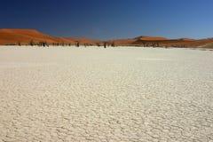 Dry salt lake. Dead trees and red dunes in Deadvlei, Namib desert, Namibia Royalty Free Stock Photo