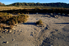 Dry salt lake - Rural landscape Stock Photography