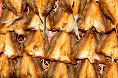 Dry salted fish Stock Images