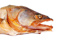 Dry salty fish Royalty Free Stock Photography