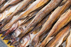 Dry salty fish Stock Images