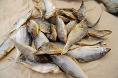 Dry salty fish Royalty Free Stock Images