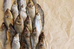 Dry salty fish Stock Image