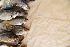 Dry salty fish Royalty Free Stock Image