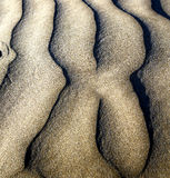 Of a  dry sand and the beach lanzarote spain Stock Photo