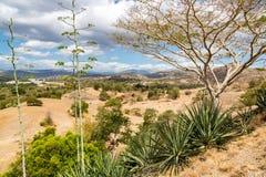 Dry savanna. Rural landscape, nature of East Timor or Timor-Leste, near Baucau, Vemasse, Laleia, Manatuto. Maritime Southeast Asia.  stock photography