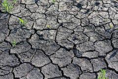 Dry season Royalty Free Stock Image