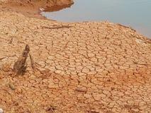 Dry season stock photos