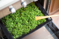Dry seasoning fennel. On a black tray in an oven Stock Photo