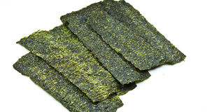 Free Dry Seaweed Royalty Free Stock Photography - 23261277