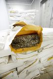 Dry seaweed. Stack of paper packs with dry seaweed with the open one on top Stock Images