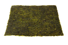 Dry seaweed for sushi. Dry seaweed for japanese kitchen on white background Stock Image