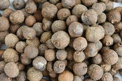 Dry seeds of allspice Royalty Free Stock Images