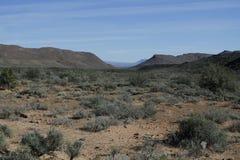Dry semi desert Karoo Landscape. Dry and semi desert Karoo Landscape Stock Photography