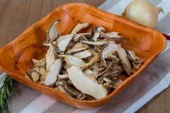 Dry shiitake Stock Images