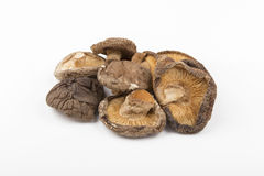 Dry shitake mushroom. Pile on white background Royalty Free Stock Photo