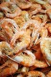 Dry Shrimp Stock Image