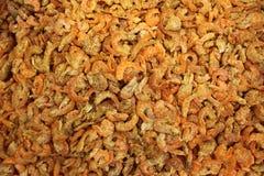 Dry Shrimps Stock Image