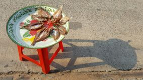 Dry sneak head fish lay on red stool beside road Royalty Free Stock Photo