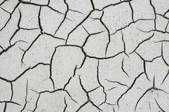 Dry soil. Dry cracked muddy surface of a marshland, symbol for climate change Royalty Free Stock Photos