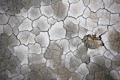 Dry soil. With cracks, Iceland Stock Photo