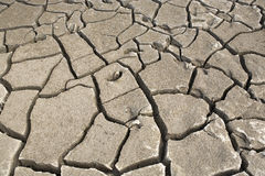 Dry soil. Royalty Free Stock Images