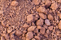 The dry soil Stock Image