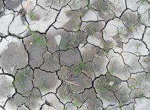 Almost dry soil Royalty Free Stock Photos