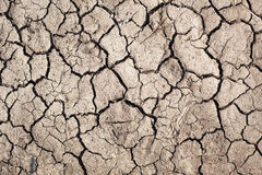 Dry soil. Stock Photography