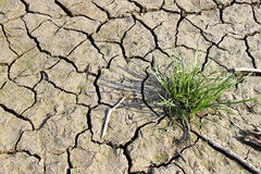 Dry soil Stock Photo