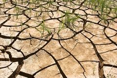 Dry soil royalty free stock images