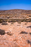 Dry Soil. A dry soil landscape in malta royalty free stock photo