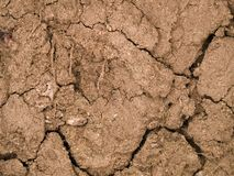 Dry soil. A background of dry cracked soil royalty free stock photos