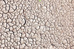 Dry soil. A shot of dry soil on the ground Royalty Free Stock Images