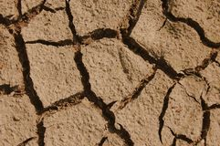 Dry soil. A shot of dry soil on the ground Stock Photography