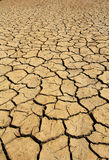 Dry soil in arid areas Royalty Free Stock Photo