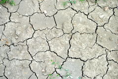 Dry soil as background Royalty Free Stock Images