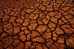 Dry soil background Royalty Free Stock Image
