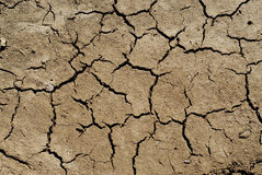Dry soil background Royalty Free Stock Photos