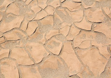 Dry soil background Stock Image